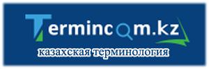 Терминологический фонд казахского языка